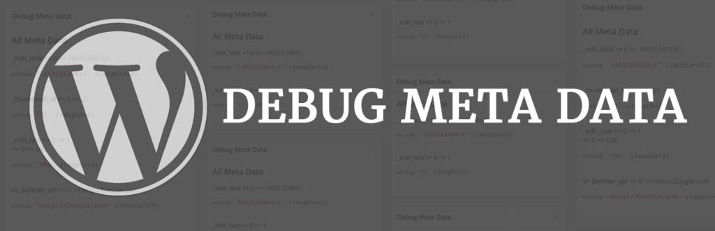 WordPress Debug meta Data